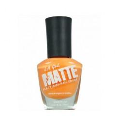 Matte finish nail